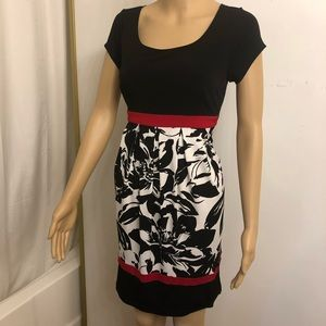 En Focus Stretch Dress